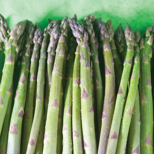 Asparagus Metal Print