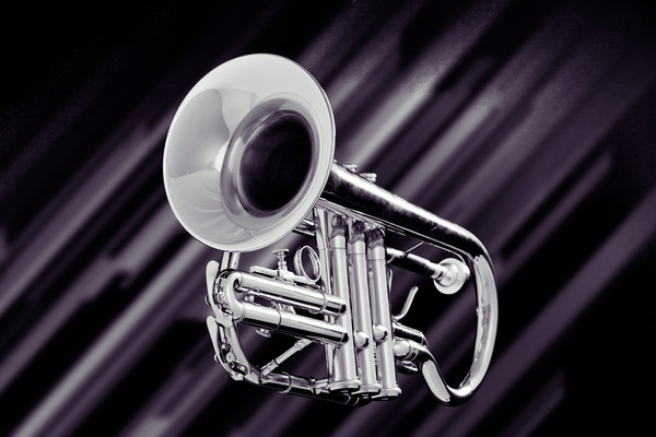 Trumpet on Lines Metal Wall Art 2502.52