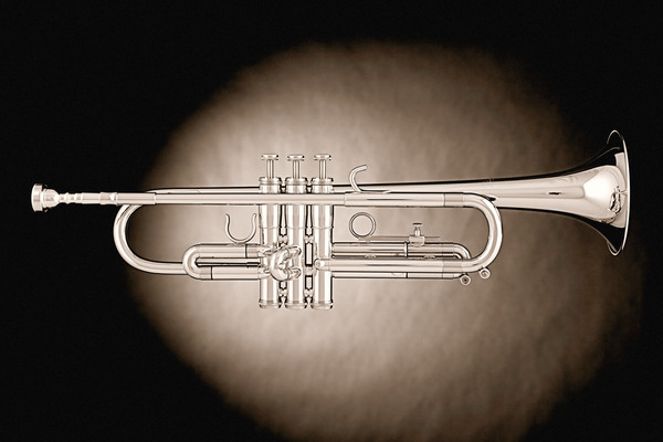 Trumpet on Spotlight in Sepia 2502.53