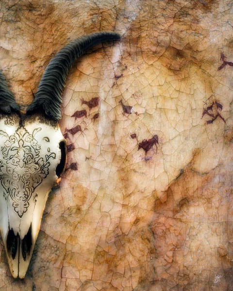 Southwestern skull cave painting