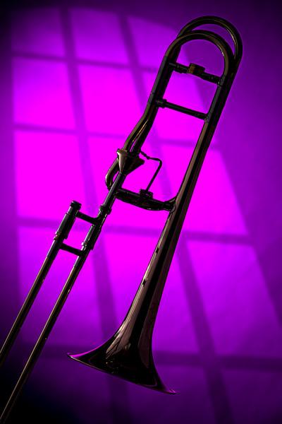 Trombone Wall Art Silhouette 2608.43