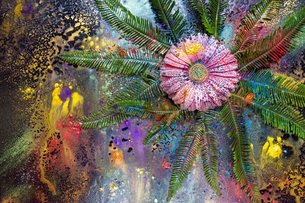 Masterpieces of art, Creative art works, Floral photography using flowers,