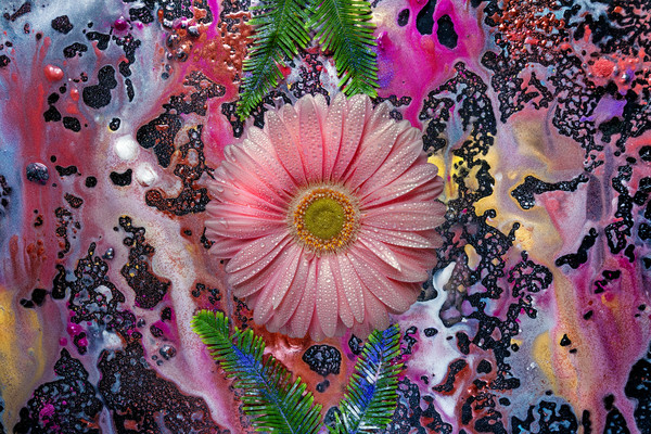 dew covered flowers, acid trips and paintings, abstract flower art,