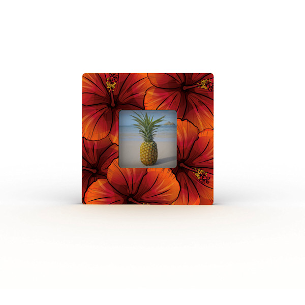 Colorfuse Mini Frames | Hibiscus