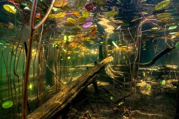 Pond depths 2