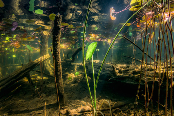 Pond Depths