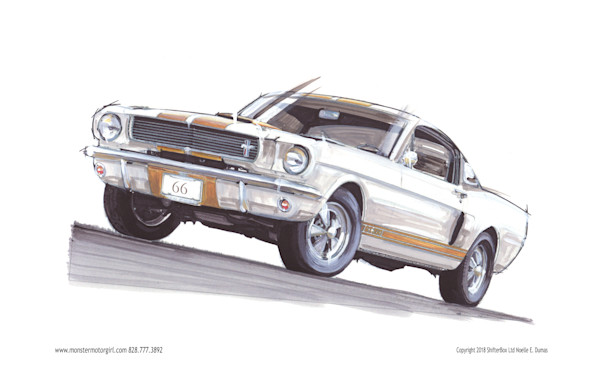 66 Shelby Mustang white and gold stripe gt350