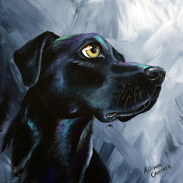 Iridescent Lab original painting by Allison Cantrell