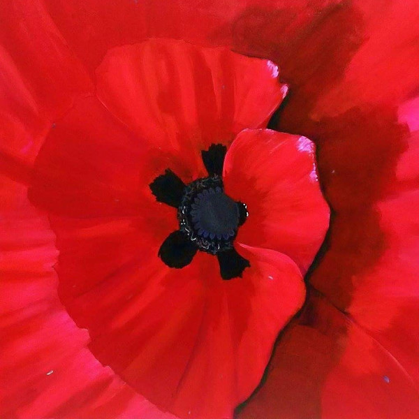 Paul's Poppy by Briar Emond | SavvyArt Market original painting