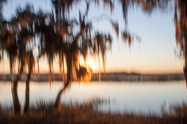 Palm Tree Sunset 3
