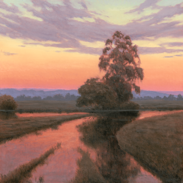 Wetland Sunset Reflections Art | Terry Sauve Fine Art