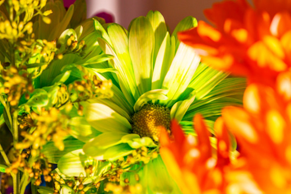 Colorful Bouquet