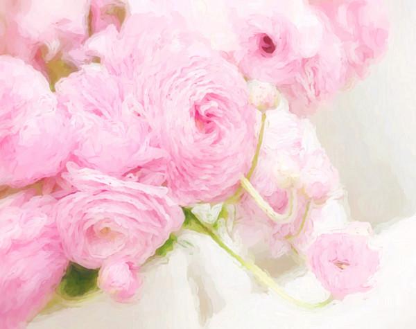 Flowers, Flowers, Flowers