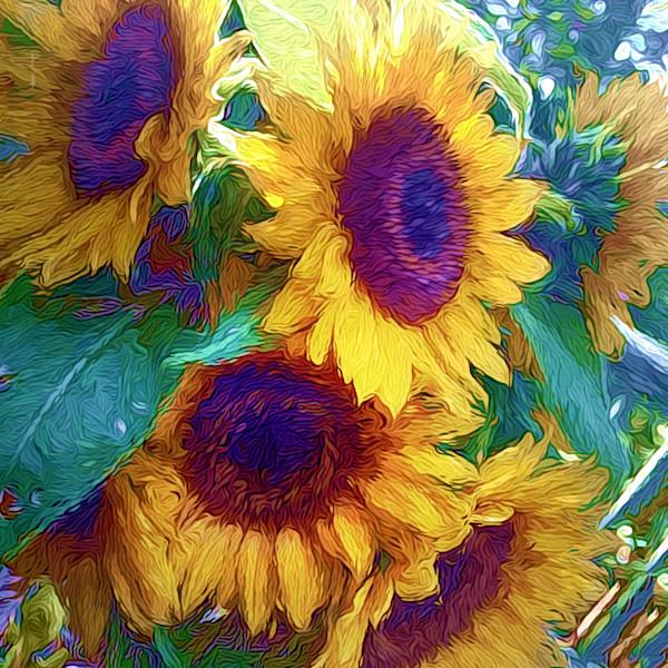 Always A Season for Sunflowers