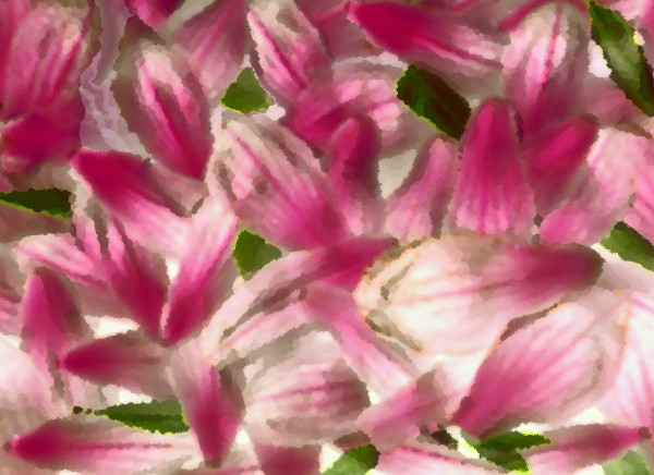 Floral digital collage / Fine art abstract landscape / Khrysso Heart LeFey / Magnolia Petals After a Storm / Affordable quality prints
