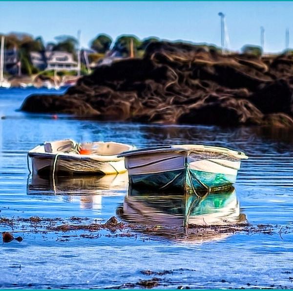 Anchored Rowboats