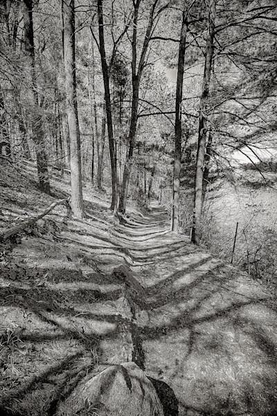 The Poets Walk