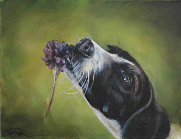 Dog Smelling Flowers