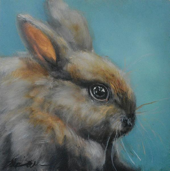 Patiently Optimistic Bunny