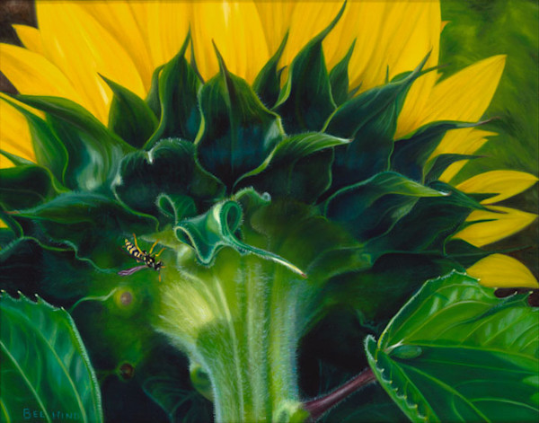 Crandell, Sunflowers 2, Scan