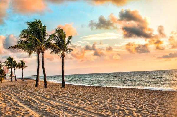 Golden Morning Sunrise on the Beach