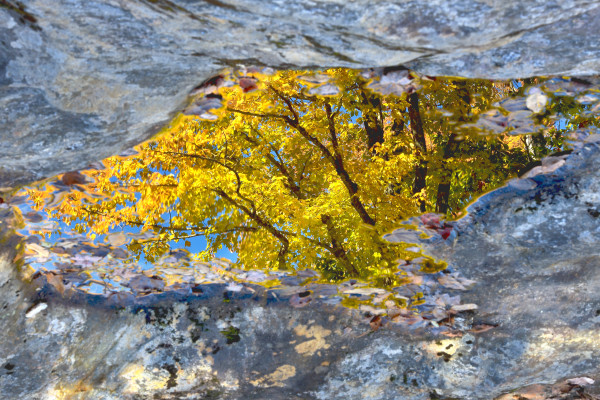 Autumn colors are reflected on a rocky river edge in Bethel, Maine.