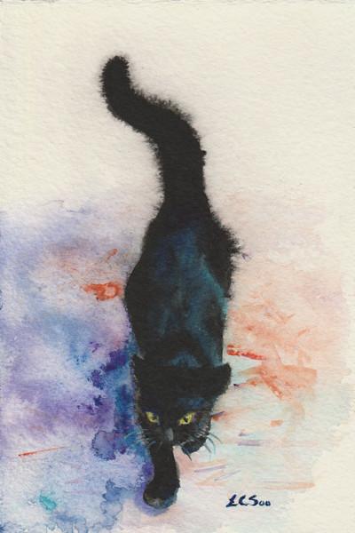 Black Cat Strolling
