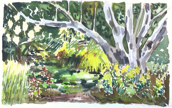 Solitude at the Garden
