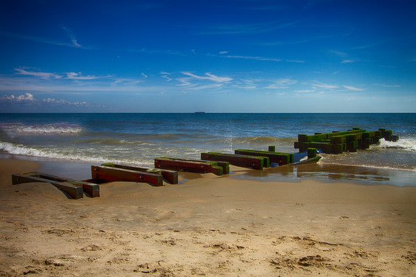 A Fine Art Photograph of Romantic Shores in Rehoboth by Michael Pucciarelli