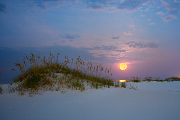 Full moon setting over the Gulf of Mexico near Pensacola Beach, Florida | Fine Art Prints on Canvas, Paper, Metal, & More | Waldorff Photography