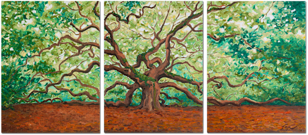 Angel Oak Triptych
