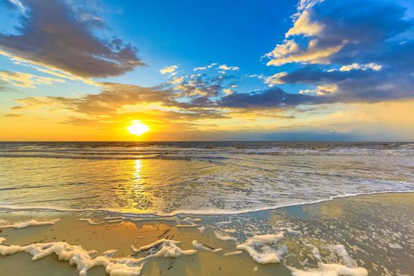 Bold Sunrise