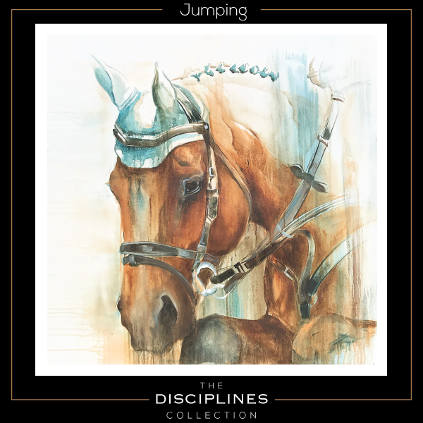 discipline collection, world equestrian games, equestrian art, stadium jumping
