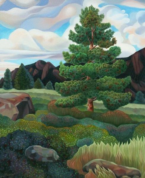 Skunk Canyon Pine