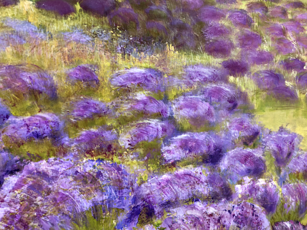 Lavender Fields Vi Art | Studio Artistica