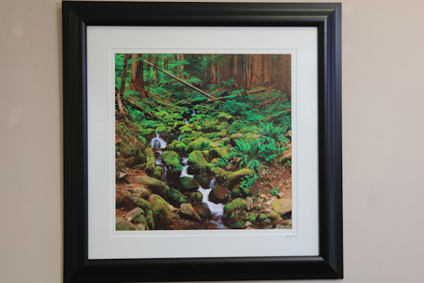 Mossy Sol Duc  Framed & Matted
