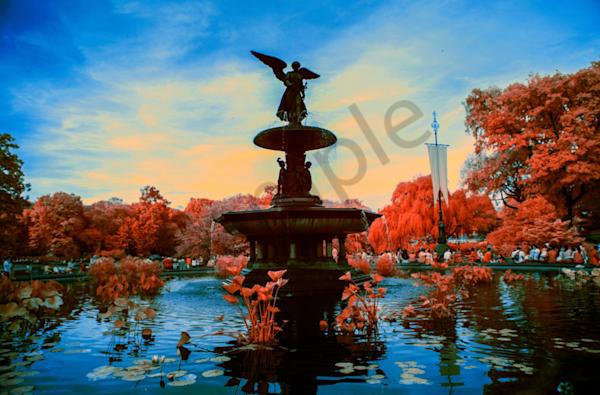 Original Canvas With Liquid Acryllic Photography Art | shawnangelski