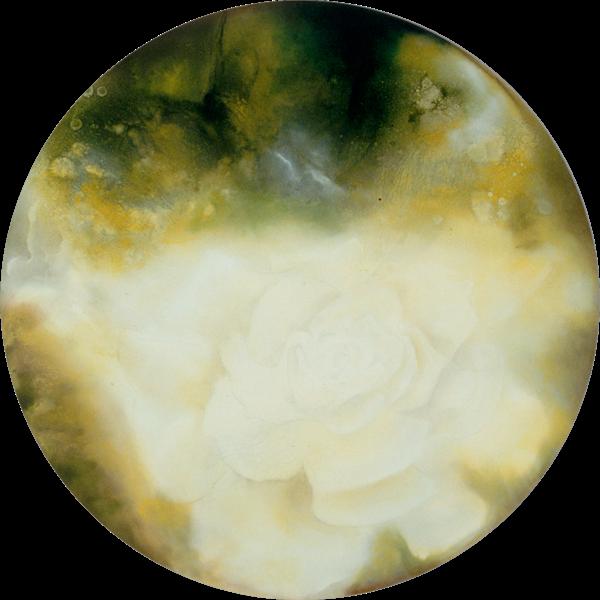 A Rose's Wood