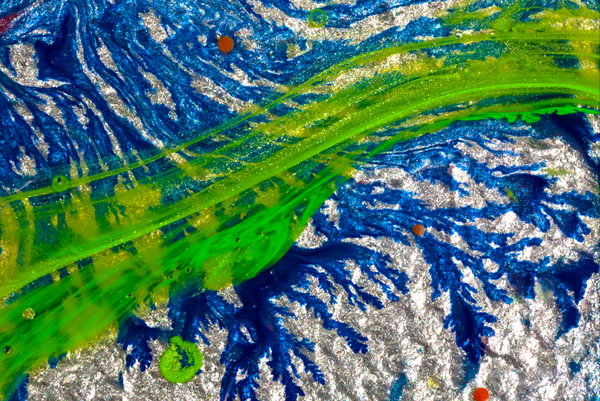 Wind Art | C.E.G. Studios LLC