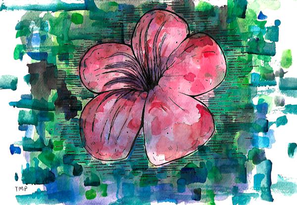 Matt Pierson Artworks | Red Red Flower