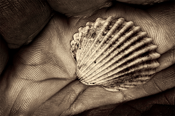 A shell in a hand of time | Koop kunstfotografie print online | A-Galleria