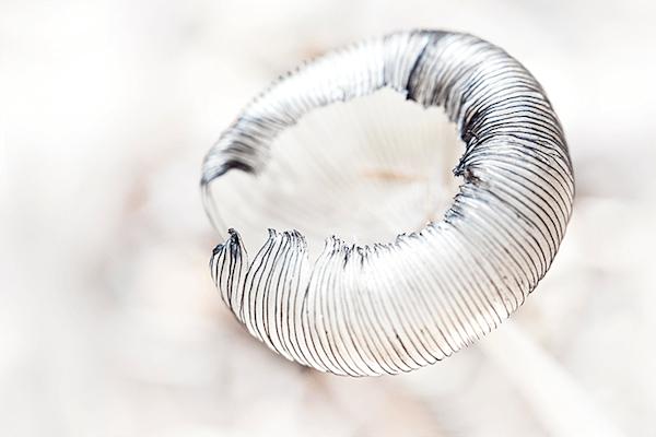 Mushroom delicate   Koop kunstfotografie print online   A-Galleria
