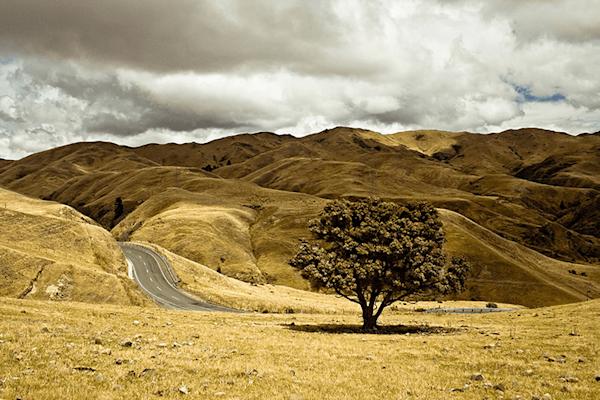 One Road   Koop kunstfotografie print online   A-Galleria