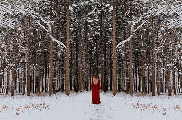 Trees | Koop kunstfotografie print online | A-Galleria