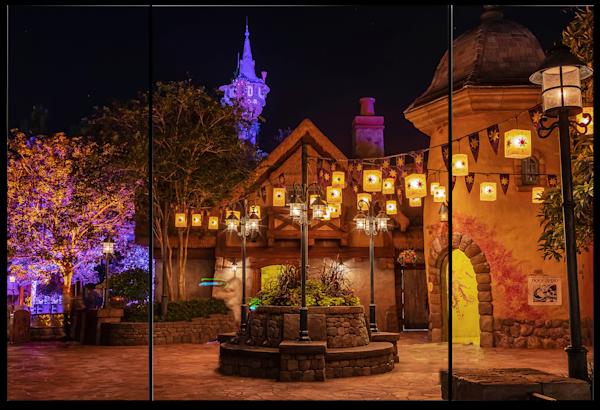 Tangled Magic Kingdom - Disney Panel Art | William Drew