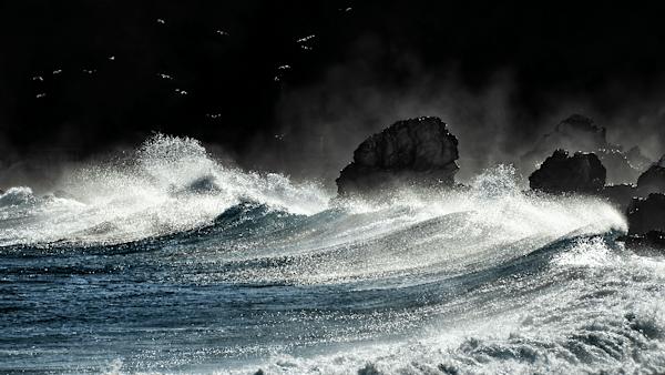 Wave | Koop exclusieve kunstfoto print online | A-Galleria