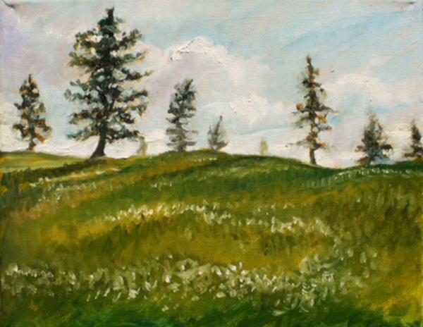 Young pines reaching upward fine art print by Hilary J. England