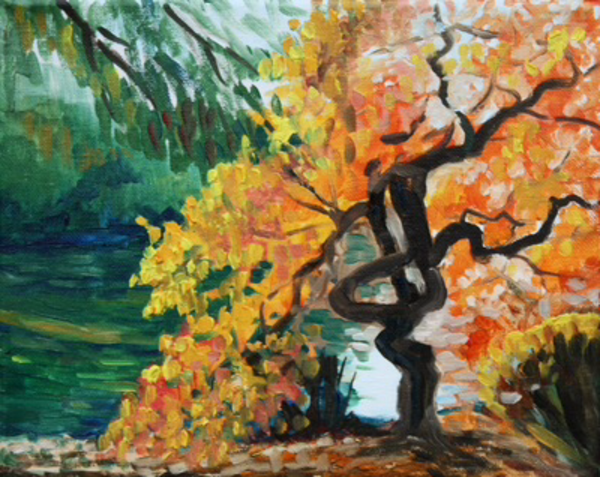 Twisted Tree by the River fine art print