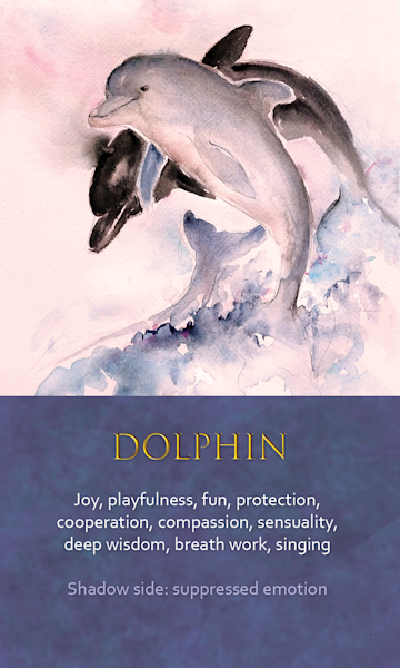 Dolphin Spirit Animal Oracle Print