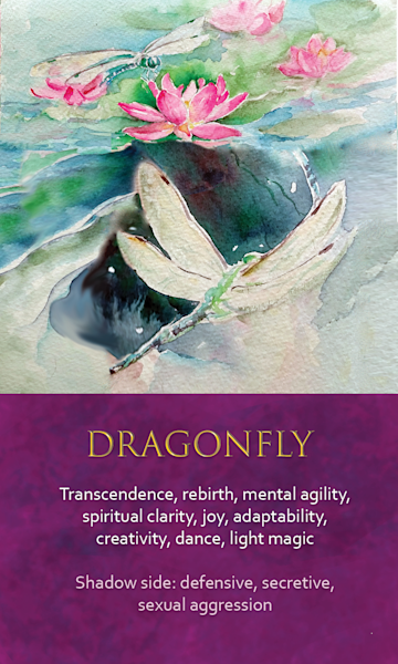 Dragonfly Spirit Animal Oracle Print
